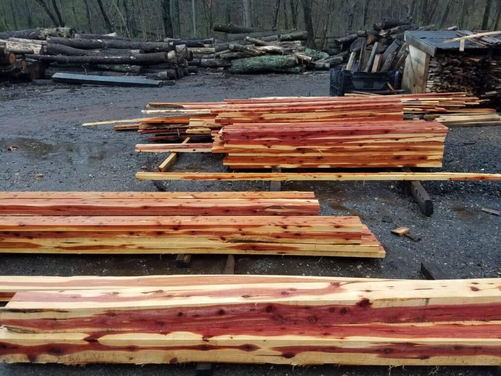 cedar lumber fresh cut from the sawmill